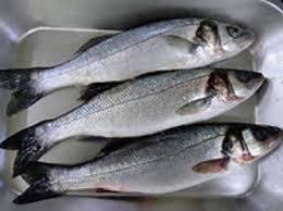 poisson à cuisiner les poissons les plus courants en cuisine