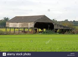 Barn Roof by Traditional Wooden Dutch Barn With Corrugated Asbestos Roof Stock