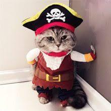 best pet halloween costumes on sale now halloween costumes best