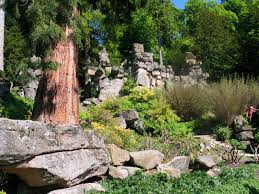 Rock Gardening Paxton Built A Rock Garden At Chatsworth In 1842 The
