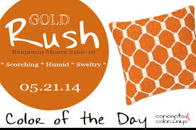 benjamin moore burnt orange color of the day gold rush concepts and colorways