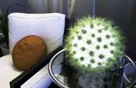 Fluorescent Light For Plants Live Lamp Is A Plant Studded Sphere Of Light Inhabitat Green