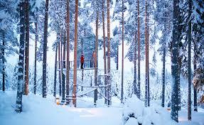 tree hotel sweden treehotel swedish lapland