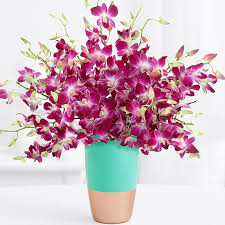 free flower delivery free flower pics solidaria garden