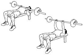 Bench Press Wide Or Narrow Grip Narrow Grip Bench Presses Home Decorating Interior Design Bath
