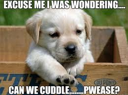 Snuggle Meme - excuse me i was wondering can we cuddle pwease