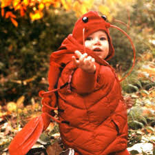 Infant Halloween Costume Patterns 20 Baby Lobster Costume Ideas Funny Baby