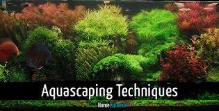Marine Aquascaping Techniques Aquascaping Techniques From Beginner To Advanced Home Aquaria
