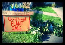 garden sustainability wench