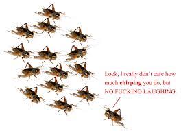 Crickets Chirping Meme - crickets chirping meme