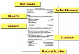 Example Student Resumes by Example Of Student Resume College Resume Examples Student
