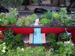 50 pleasant perception of terrace garden