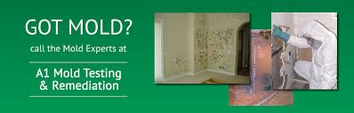 a1 mold testing mold testing mold removal mold remediation