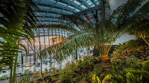 vauxhall gardens london contact us skygarden