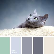 shades of violet gray color palette ideas