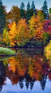 70 autumn beauty images nature autumn leaves