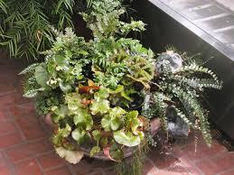 best simple indoor herb garden adjustable grow light ideas