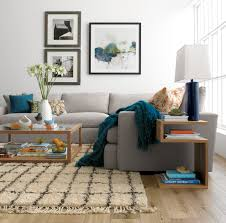 furniture rectangle lucite coffee table with furry rug and wall