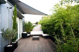 garden design with a in your apartment akoa kitchen herb from hgtv
