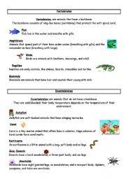free printable worksheets vertebrates invertebrates english worksheet vertebrates invertebrates education