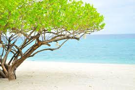 review virgin beach resort san juan batangas u2013 a thirst for life