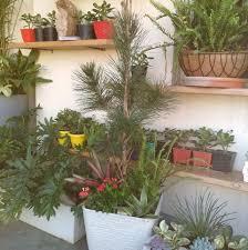 technocare nursery u0026 garden centre home facebook