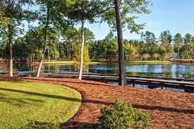 South Carolina landscapes images Landscape of south carolina images jpg