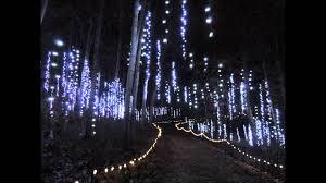 28 garden of lights wps garden of lights has new features