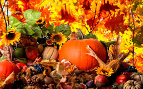fruits and vegetables from autumn season hd wallpaper