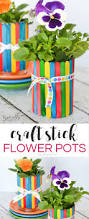 craft stick flower pots typically simple