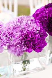 Purple Flowers Centerpieces by Best 20 Purple Carnations Ideas On Pinterest Carnation Wedding