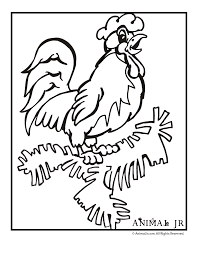 rooster coloring kids sky rooster color rooster