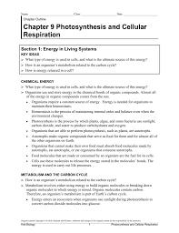 Holt Biology Worksheet Answers 008259449 1 Ccb83a87b04f071a1f3e62e8ecc6631f Png