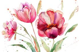 tulips flowers three tulips flowers painting by jershova