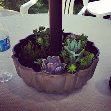 Unique Planters For Succulents by An Old Bundt Cake Pan Is Perfect For Succulents Around An Umbrella