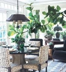 Zebra Dining Room Chairs by Animal Print Dining Room Chairs Foter