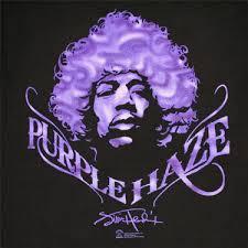 purple photo album the jimi experience purple lyrics genius lyrics