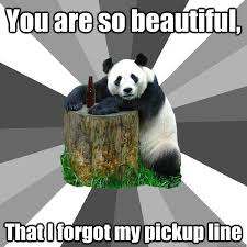 So Beautiful Meme - you are so beautiful that i forgot my pickup line pickup line