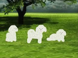 bichon frise intelligence second life marketplace bichon frise scripted and animated dog