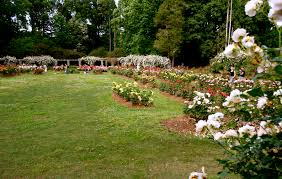 Raleigh Botanical Garden Goodnight Raleigh A Look At The Architecture History And