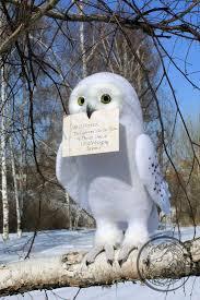 best 25 hedwig owl ideas on pinterest harry potter book 8