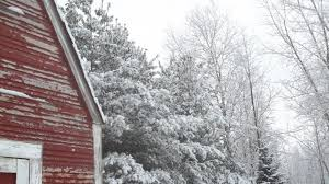 2048x768 wallpapers page 242 winter outdoors barn chicken woods