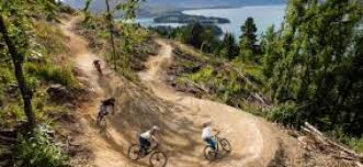 The New Zealand Cycle Trail Official Website Waitangi Mtb Park Mountain Bike And Cycle Trail Guide