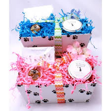 sympathy gift baskets loss of a or dog sympathy basket healing baskets