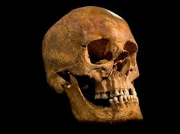 king richard iii bones found scientists say