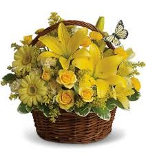 elkton florist elkton florist datasphere