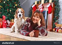 beagle room decorations stock photo 523799692