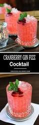 cranberry gin fizz cocktail creative culinary
