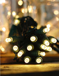 two tone mini christmas lights led christmas lights