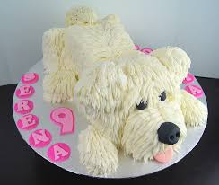 dog cake treat confectionery san diego cakes and chocolates